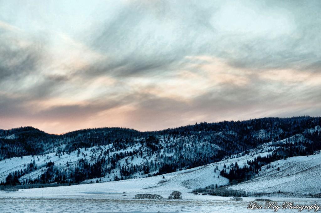 WinterDelight3