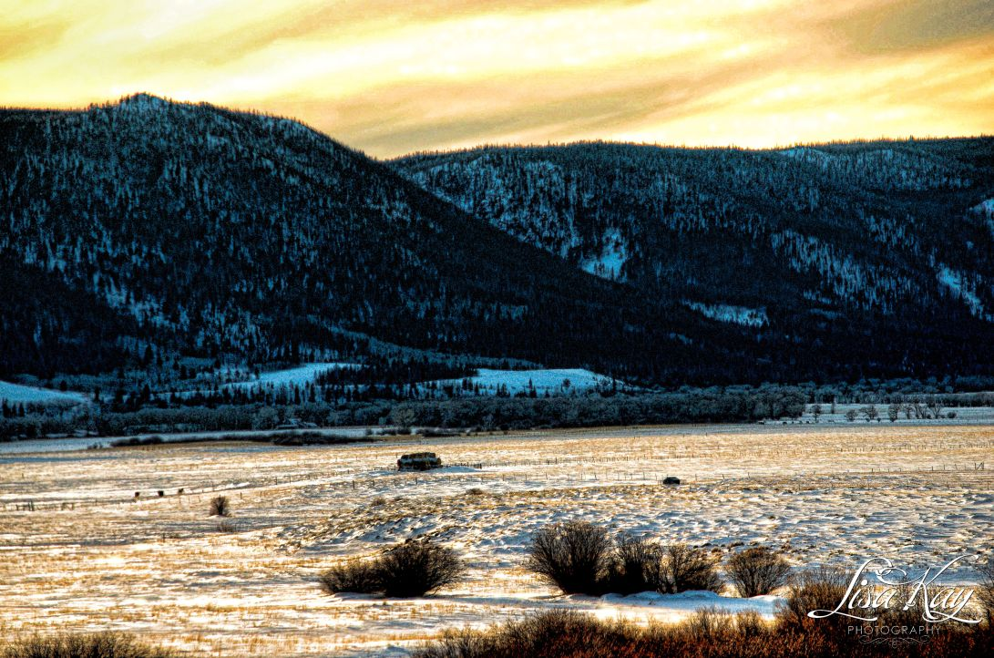 frostytwilights4waterrmark